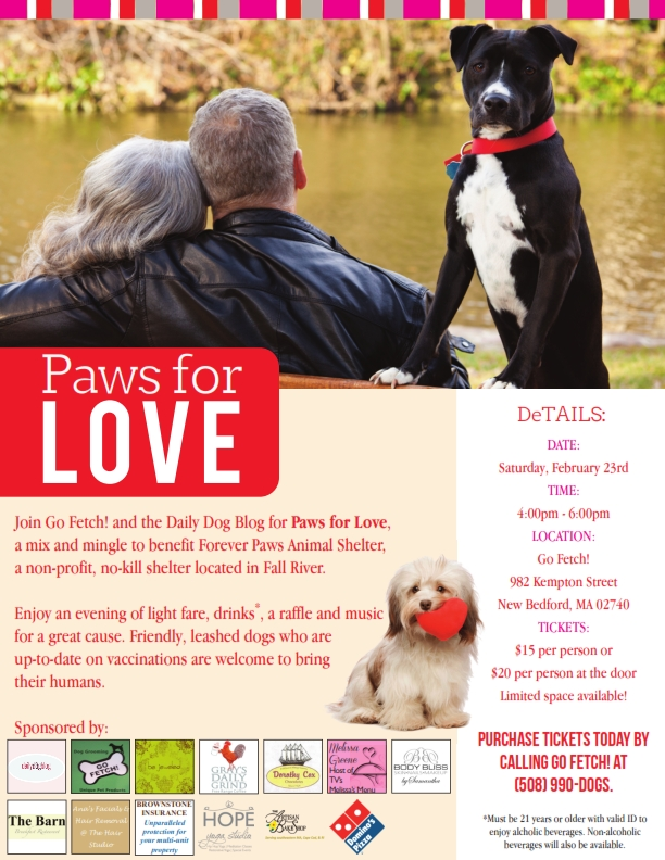 Paws for Love Fundraiser Poster