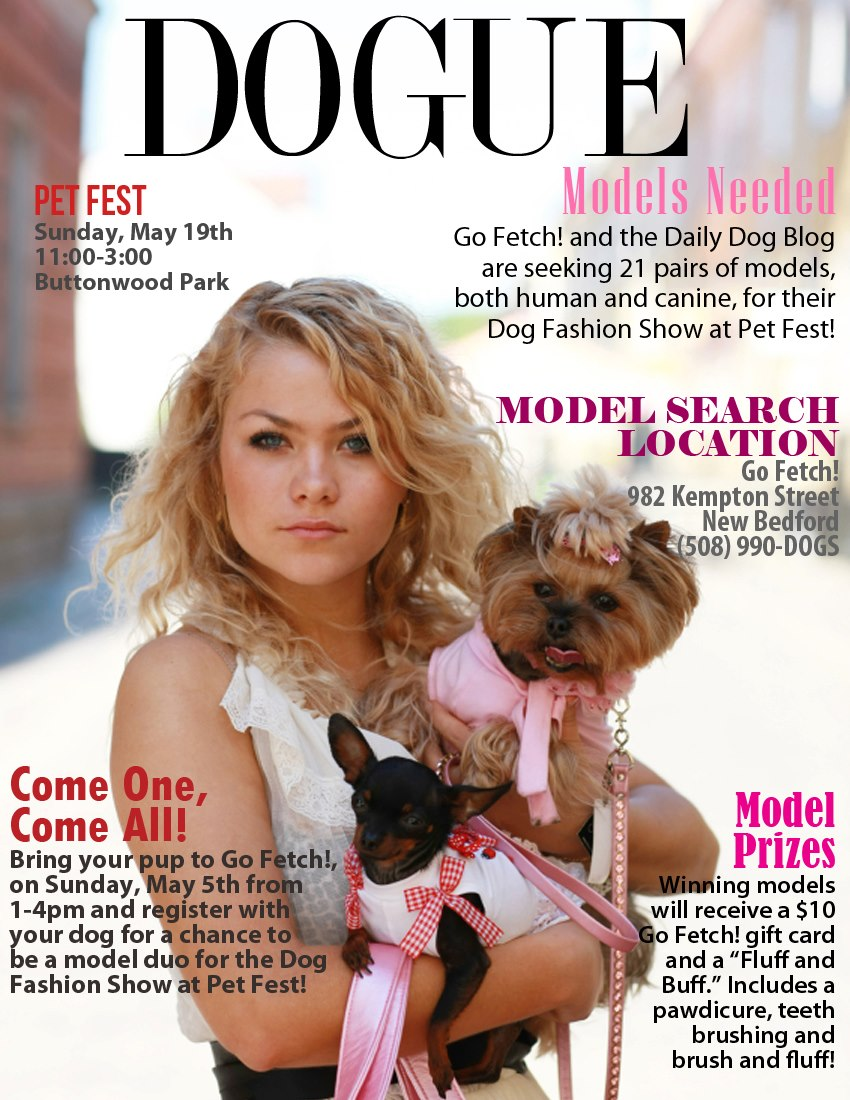 DOGUE Model Search Event Poster