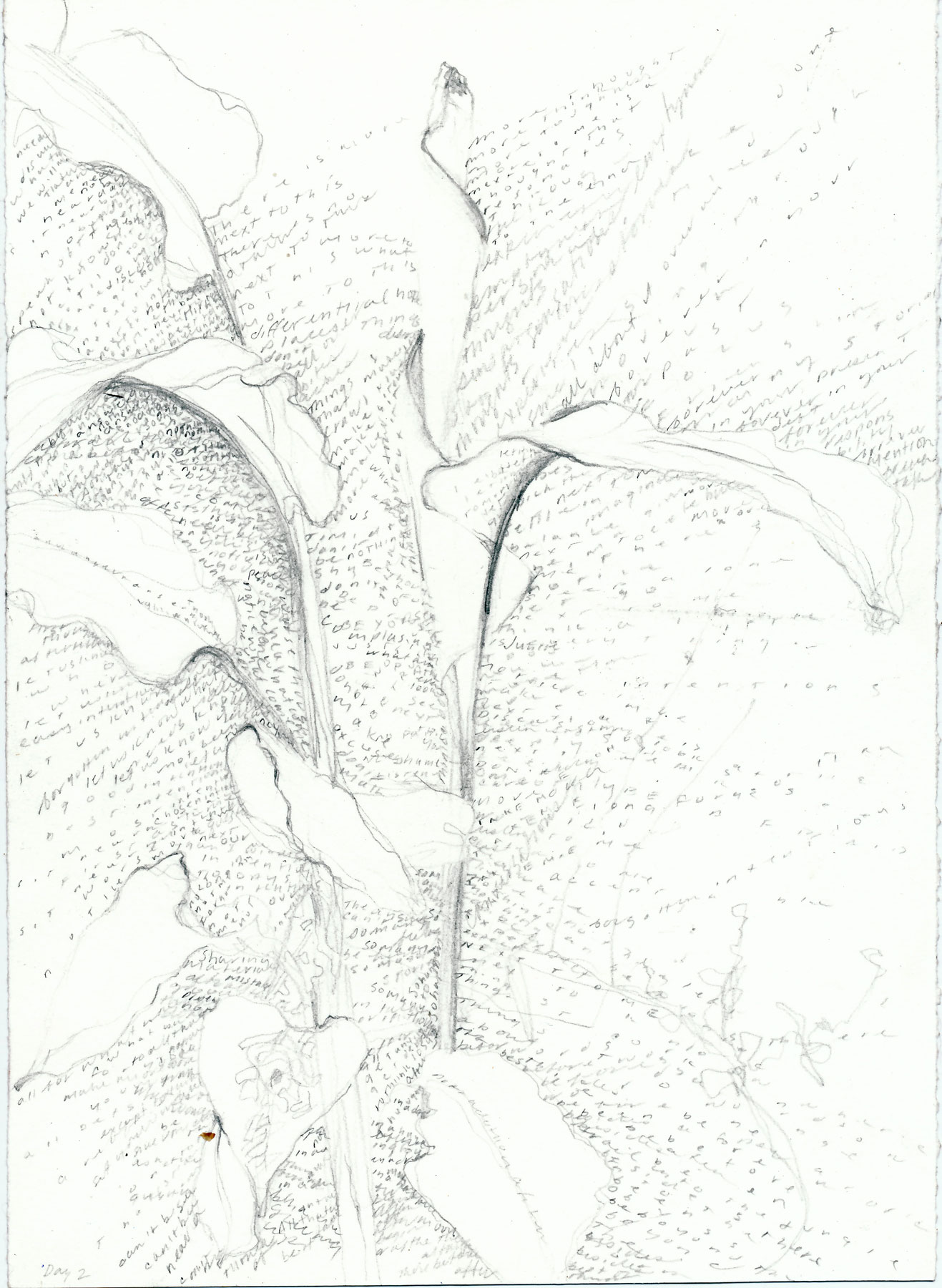 peru_0018.jpg