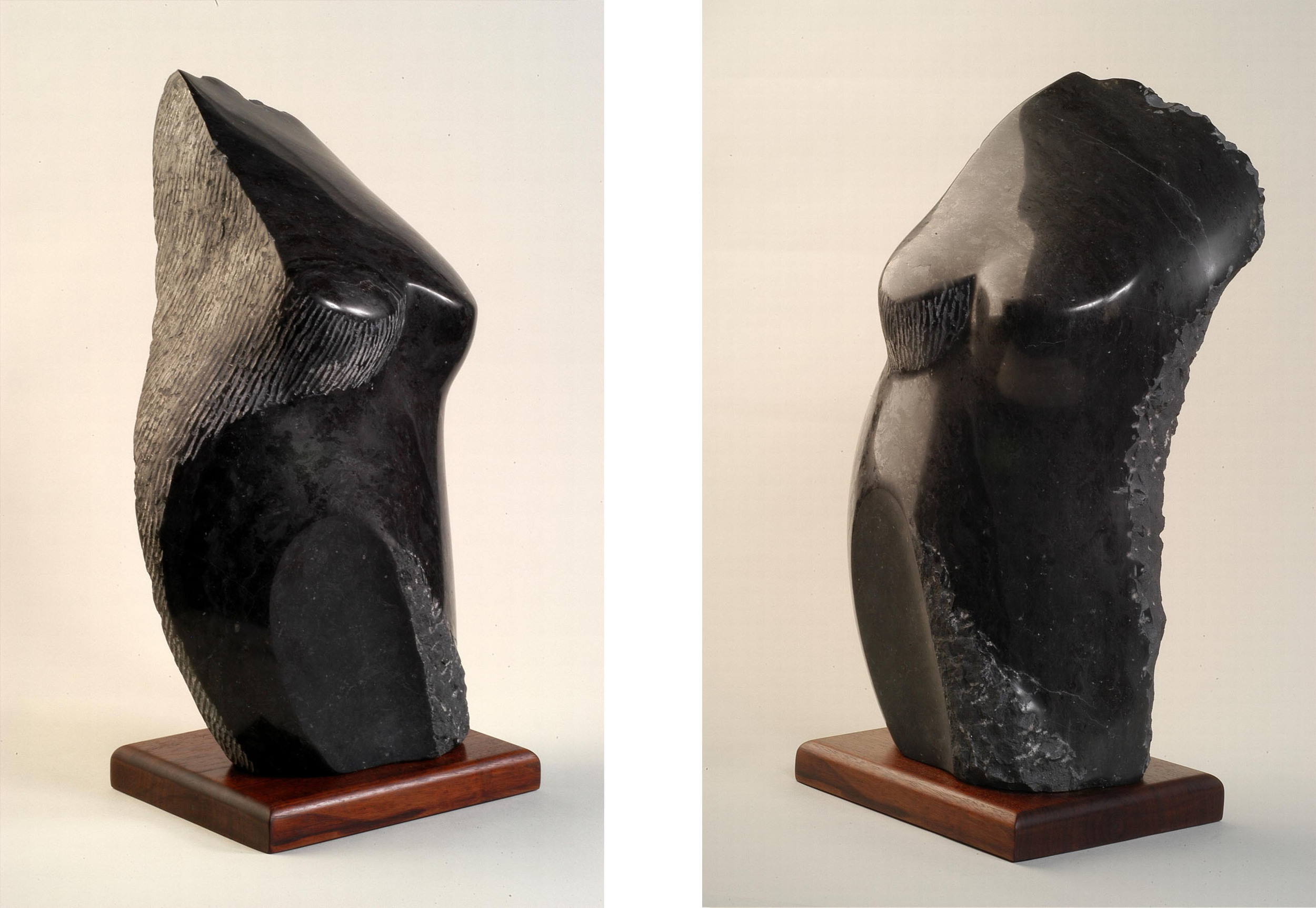 Midnight   - 20 x 12 x 8 inches - Champlain Black marble - private collection