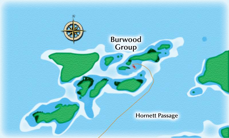 The Burwood Group