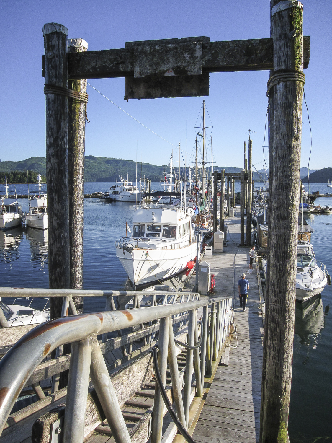 The busy docks at Queen Charlotte City