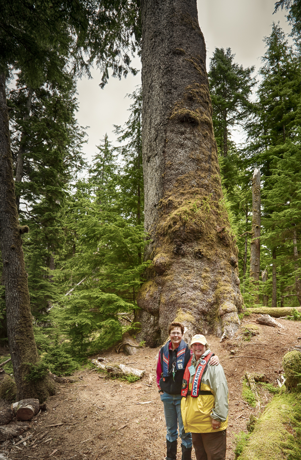 Karen and Kathy stand below the largest Spruce tree