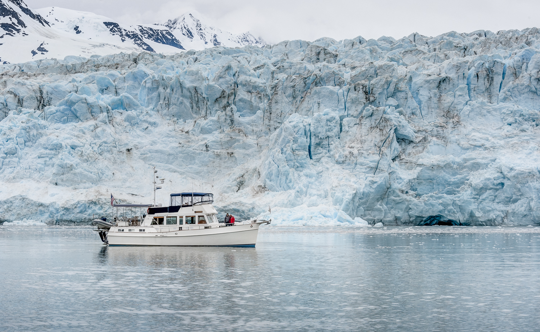 The face of Harriman Glacier dwarfs  Telita