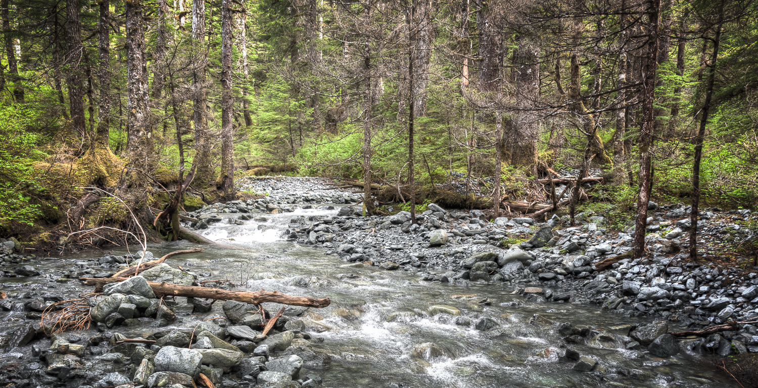 Walking up the running streams is a bit tricky, but you can make good time versus the woods
