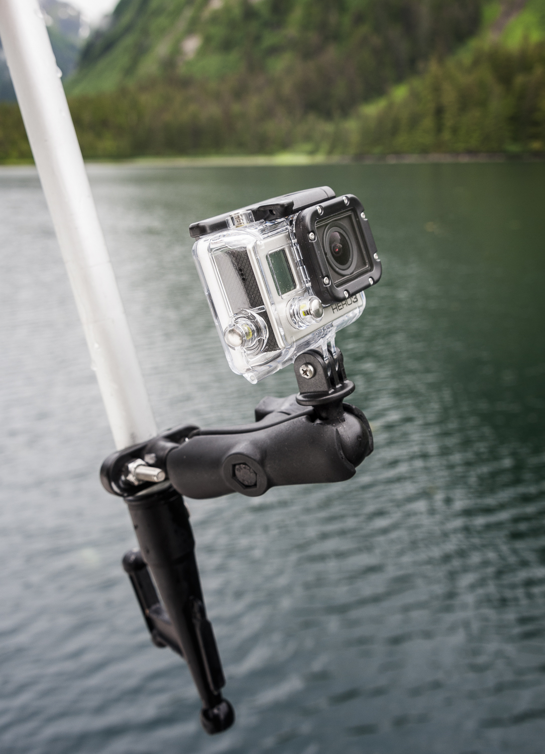 """The famous """"porpoise cam"""" rig"""