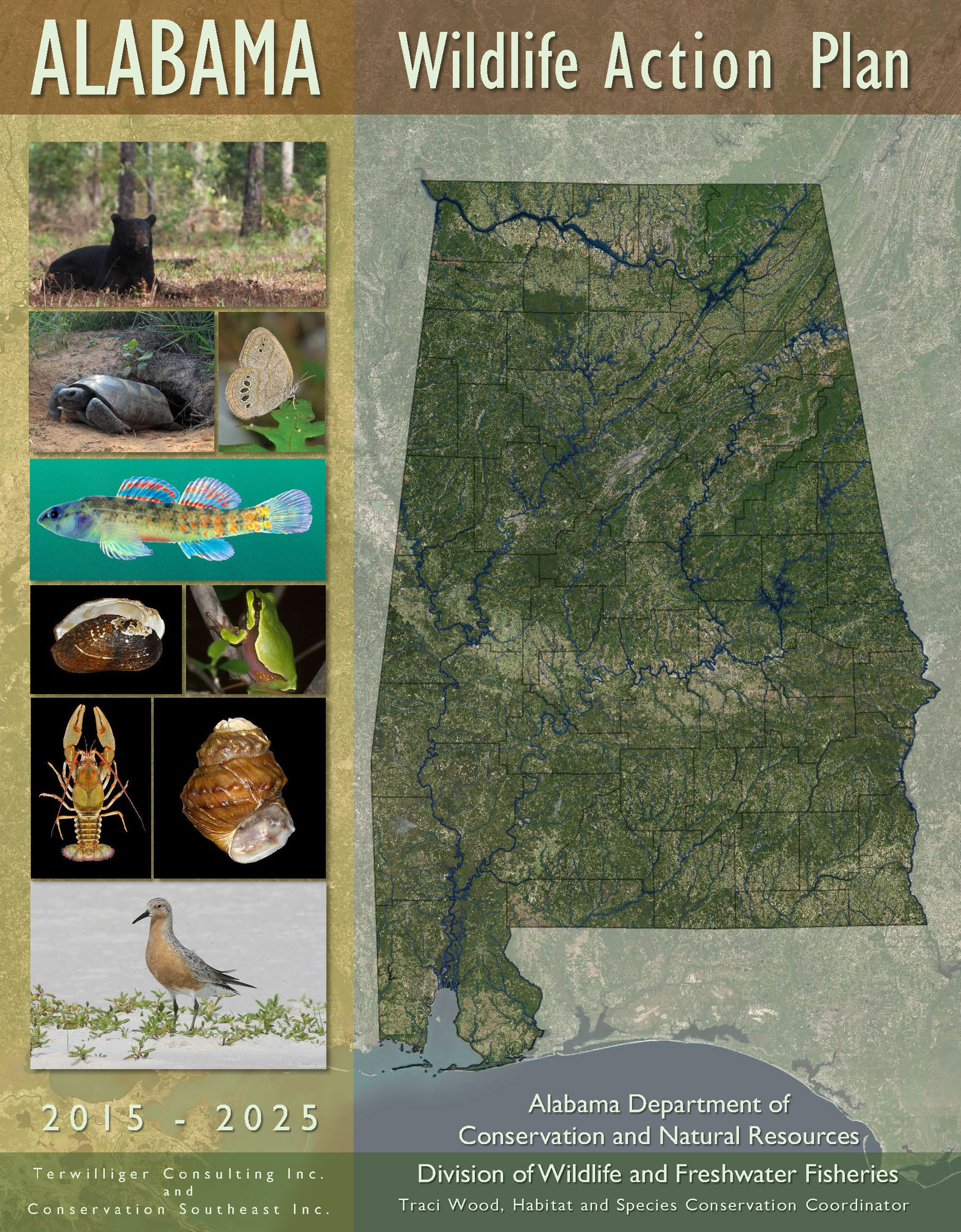 In 2014 and 2015 Conservation Southeast worked with  ADCNR ,  Terwilliger Consulting , and partners to develop Alabama's State Wildlife Action Plan for 2015-25. The entire SWAP (July 2015 draft) is available  here .