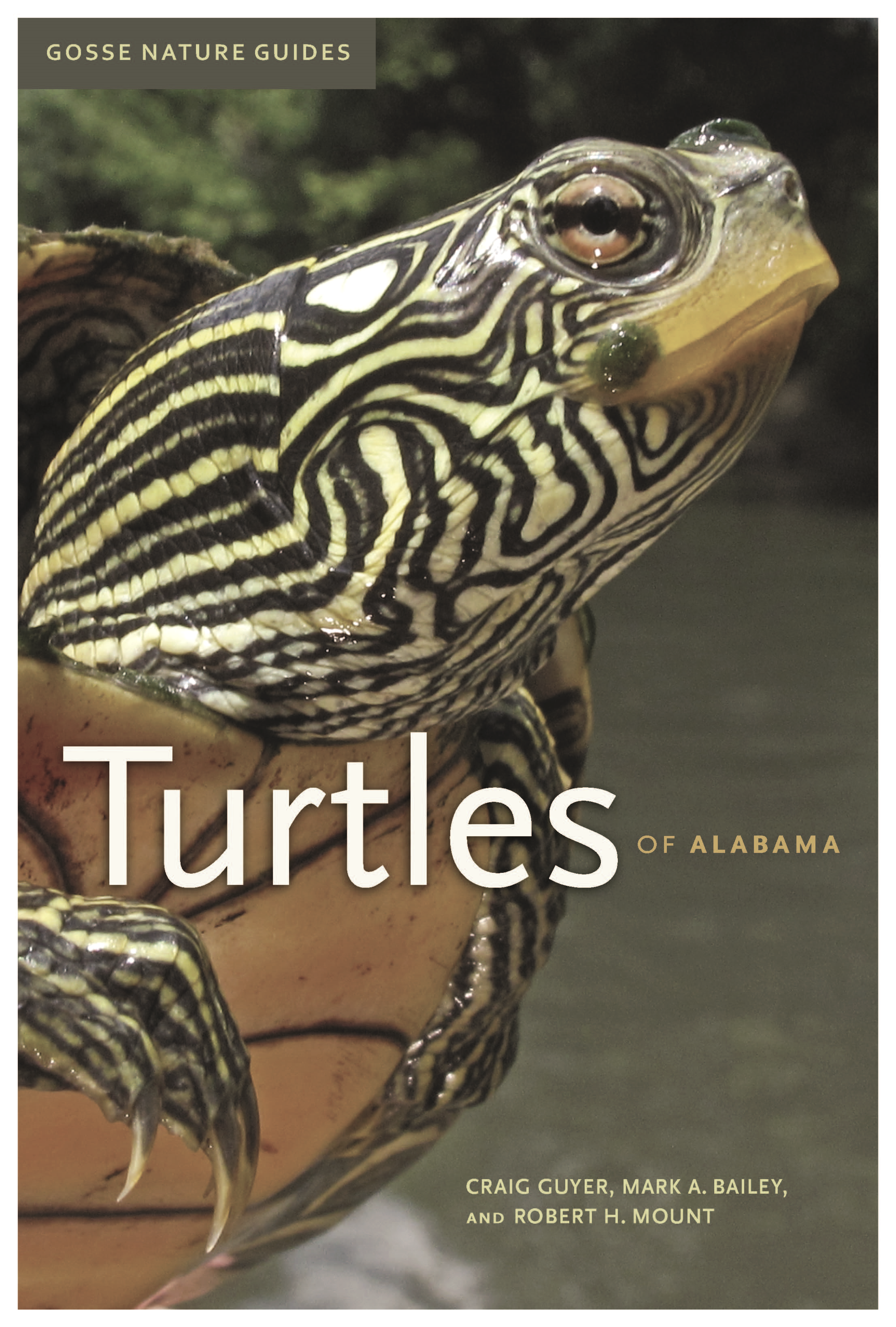 Published October 2015 by University of Alabama Press.  Cover Photo by Alan Cressler.