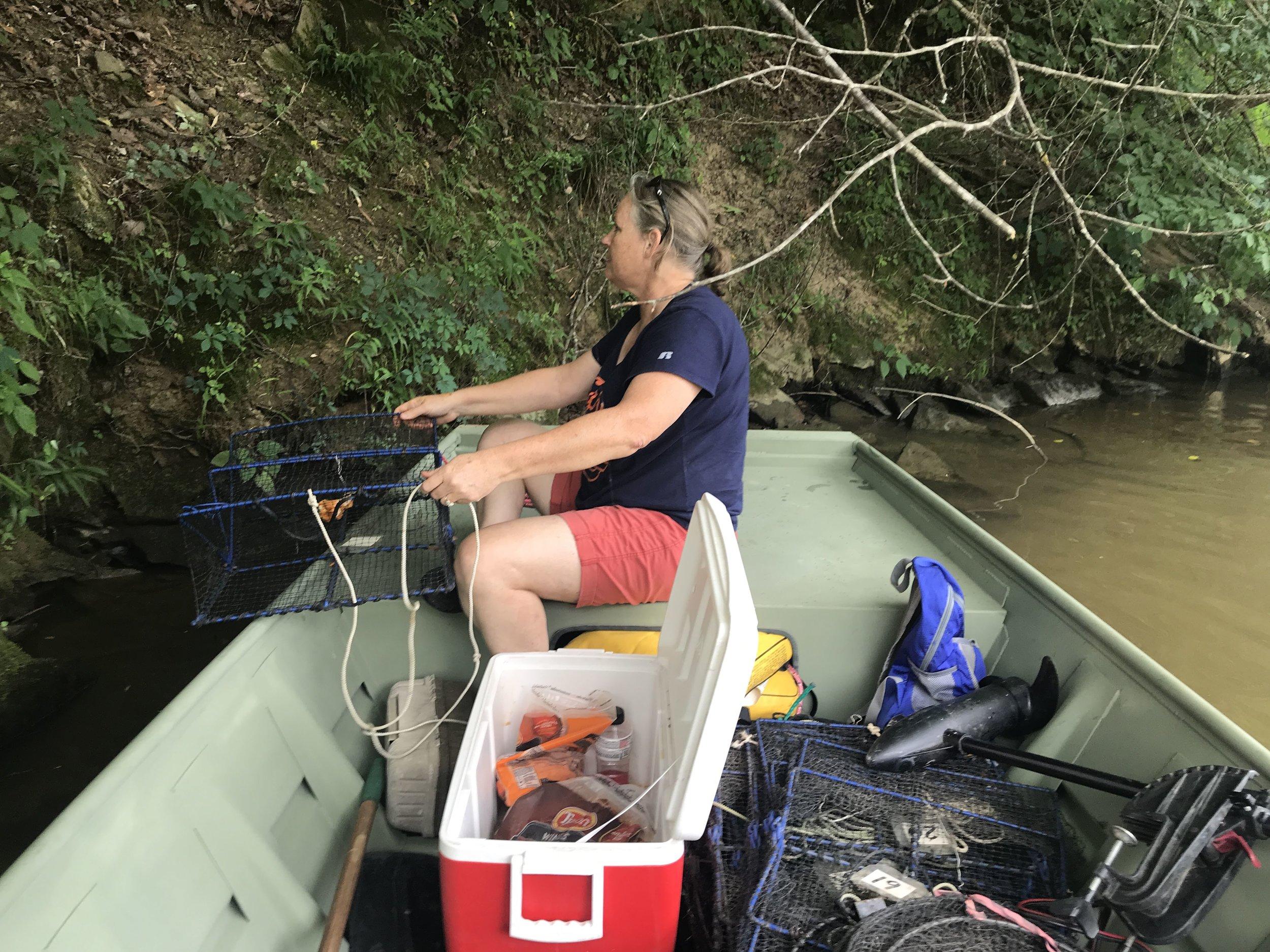 biologist Karan Bailey setting turtle traps