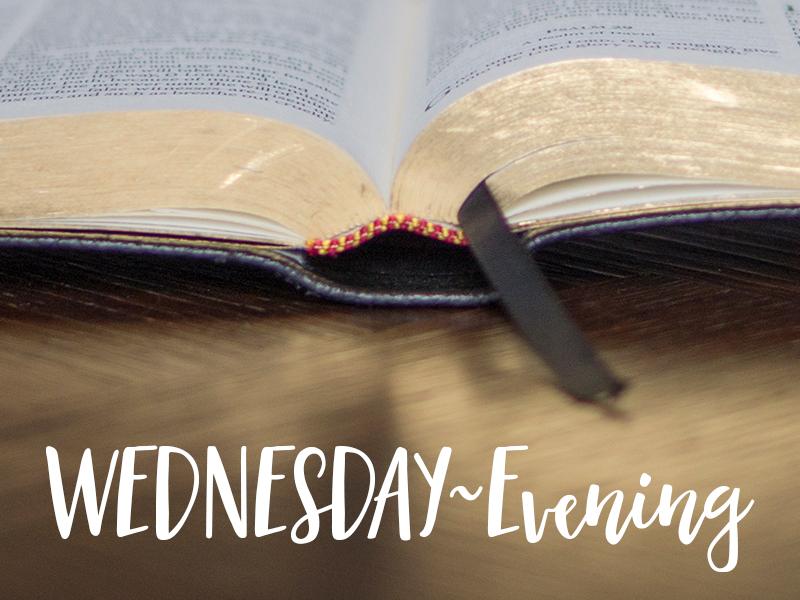 Wednesday~Evening -