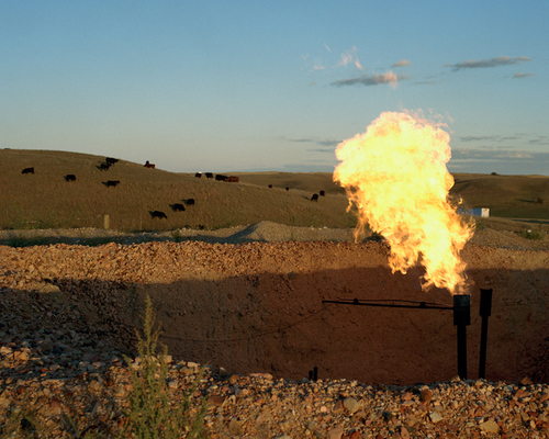 Sarah Christianson;   Natural gas flare from oil well adjacent to cattle pasture, White Earth River Valley