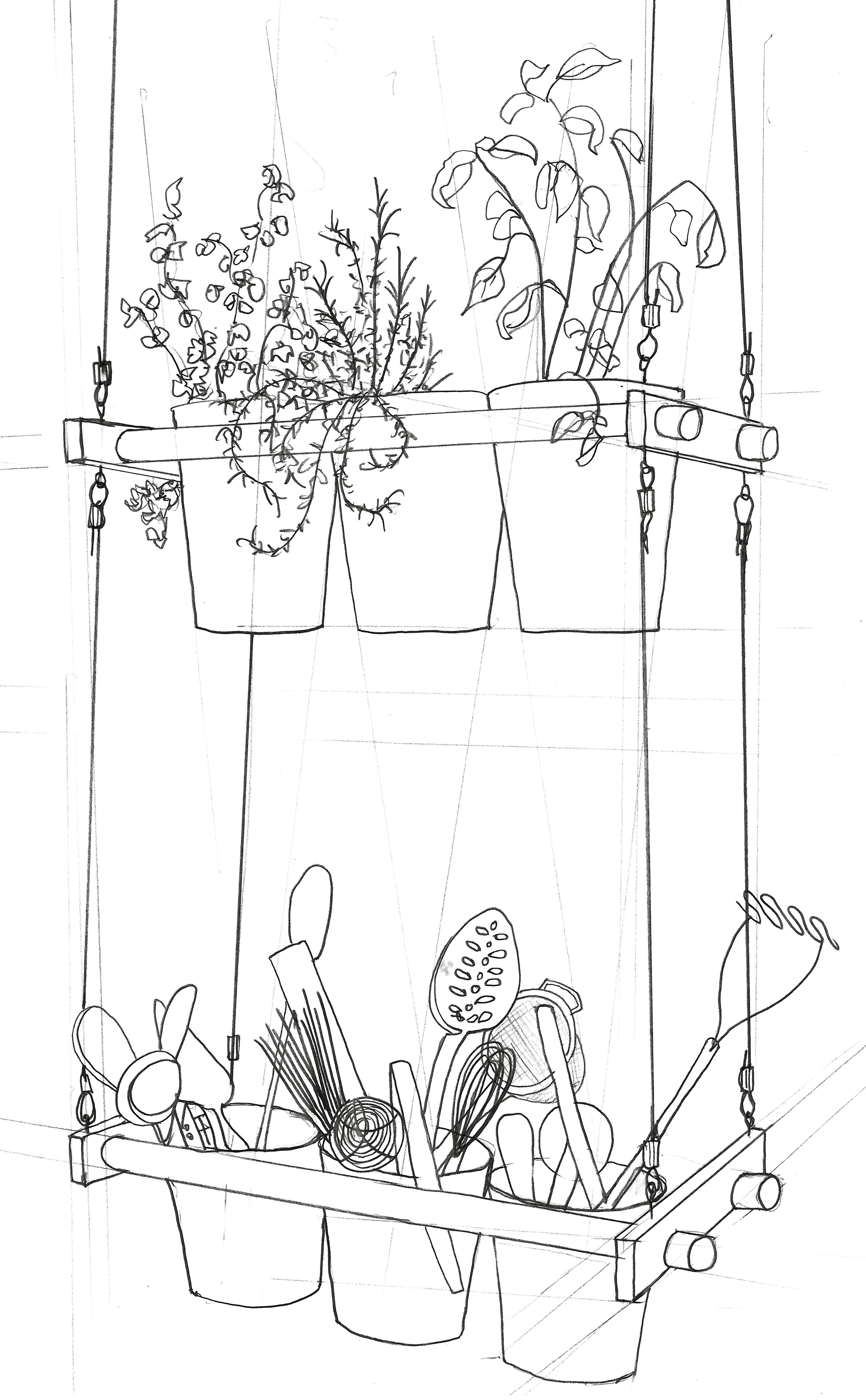 Zoe Hewett Interiors Kitchen Herbs Sketch