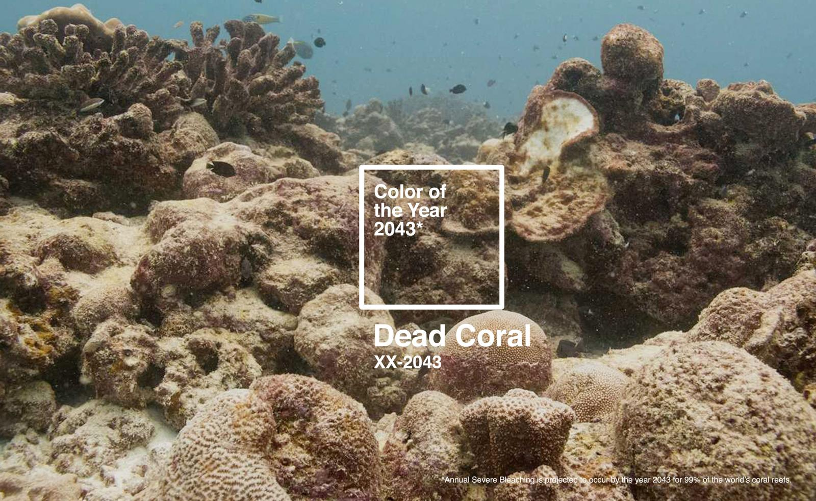 Dead Coral designed by The Racoons in protest at Pantone's Living Coral Colour of the Year 2019