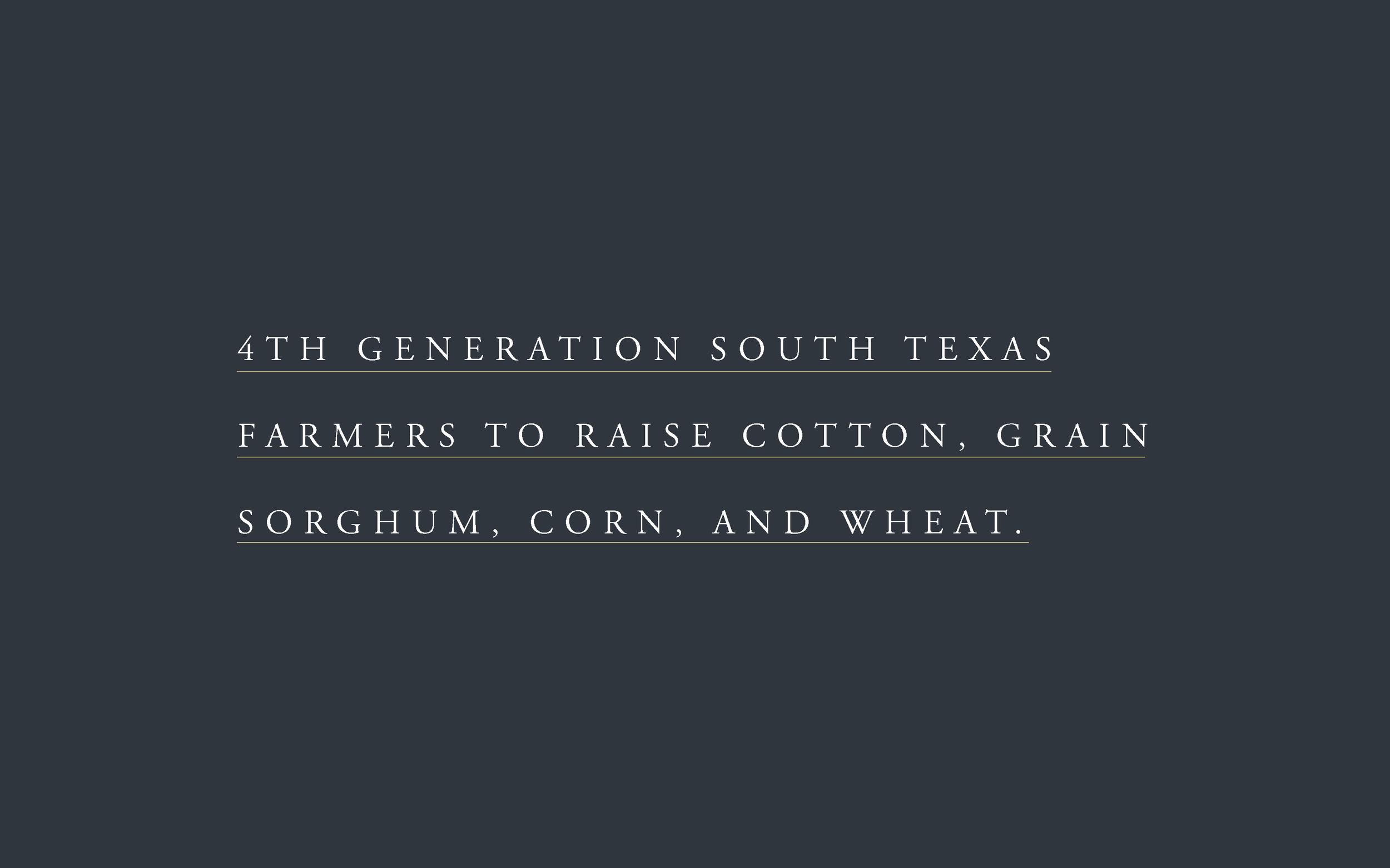 Whatley_Homepage_WebDesigner_Farm_Cotton_BrightenMade_branding4.png