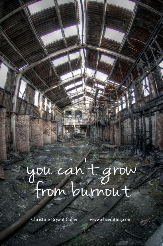 """Photo by Jason Rogers,  """"Burnt out Barn,"""" 2009.  Text by Christine bryant cohen, 2015."""