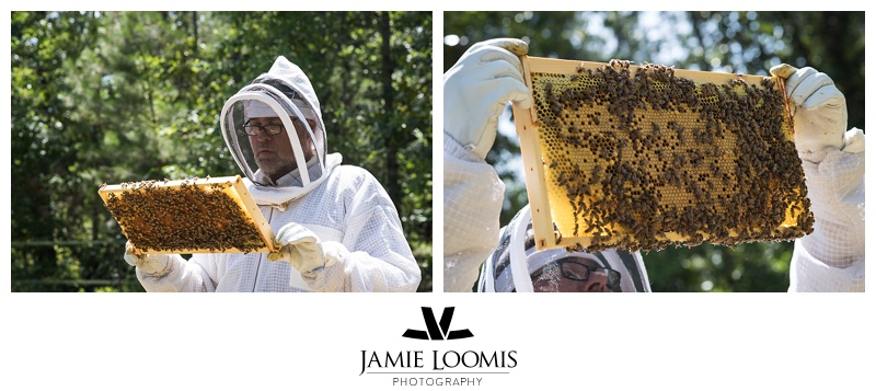 Frames from our Langstroth hive.