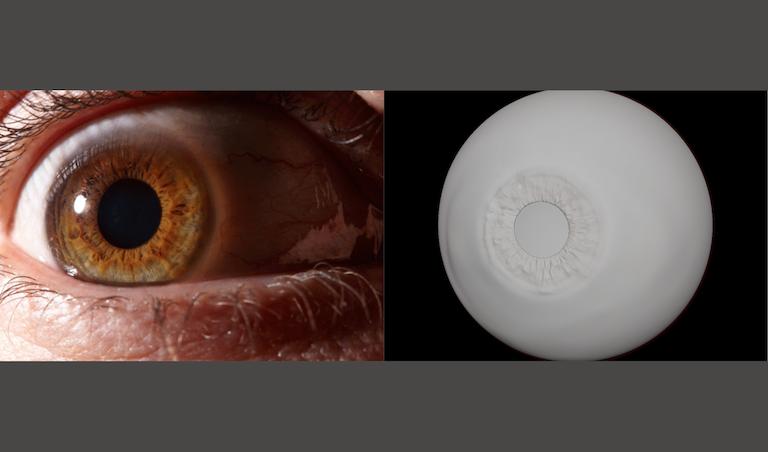 eye3D_JS_brown_grayeye_sml.png