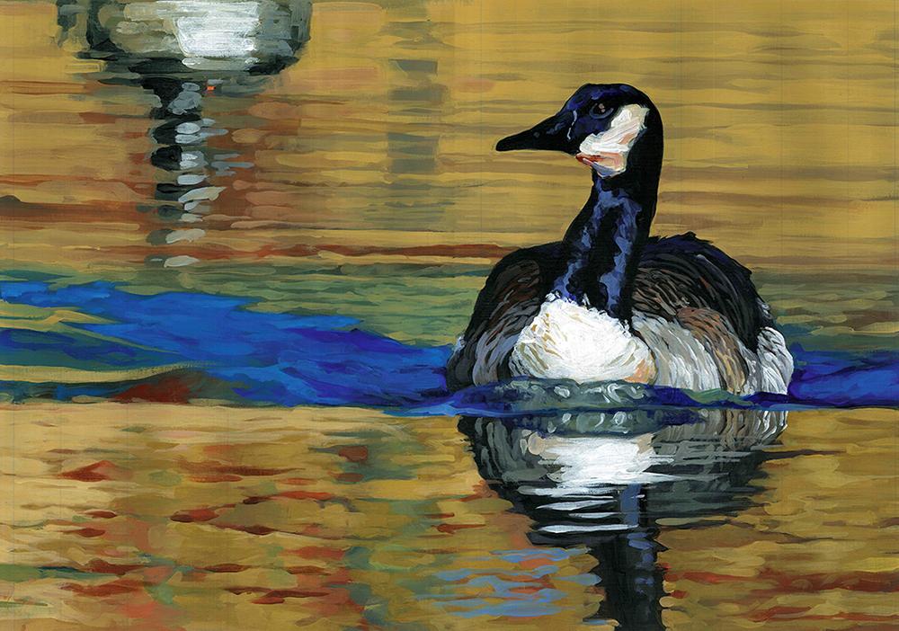 Duck 2.jpg