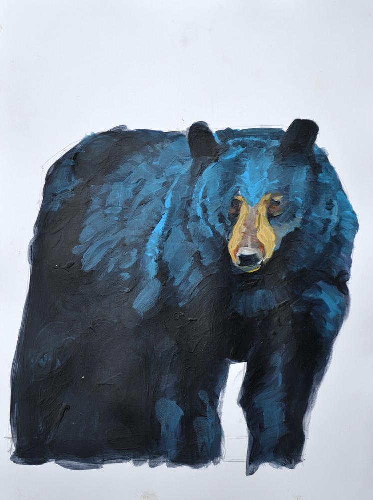 bear sketch.JPG