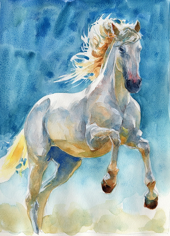 white horse watercolor  (6).jpg