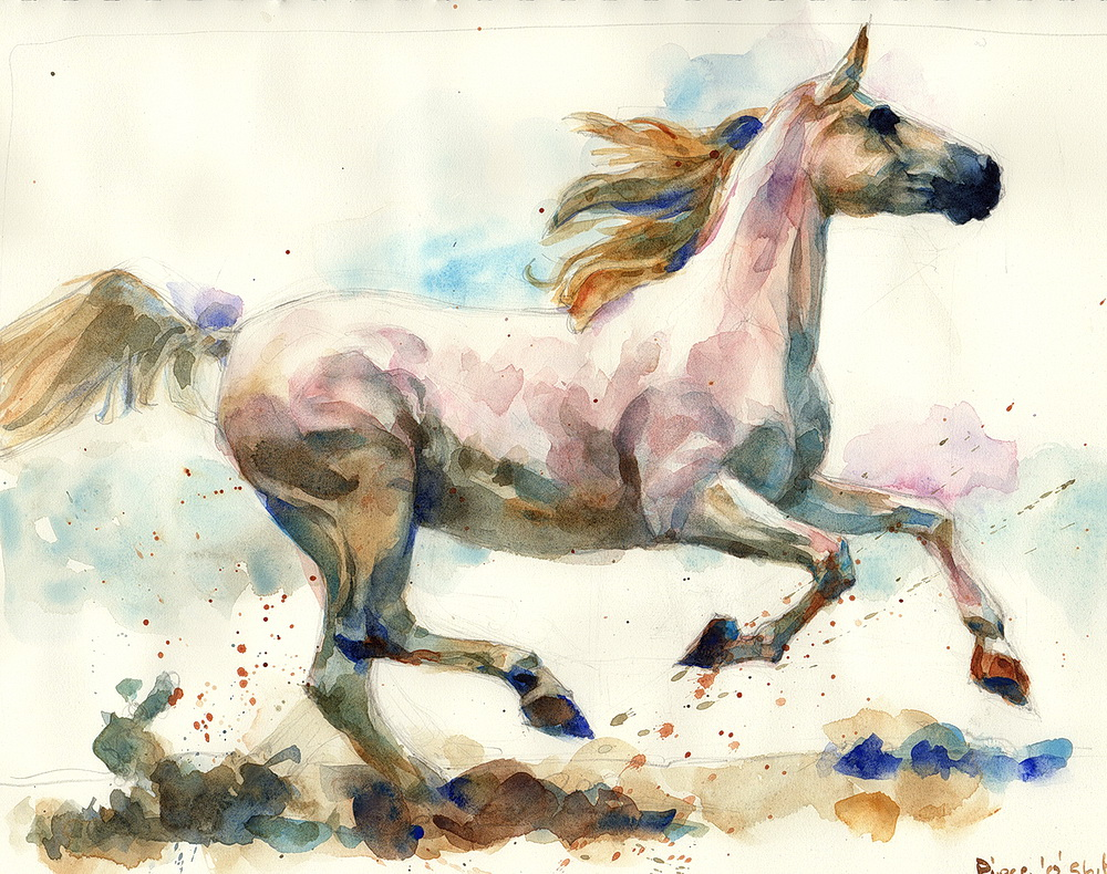 white horse watercolor  (10).jpg