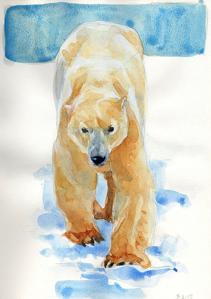 a1 polar bear watercolor (4).jpg