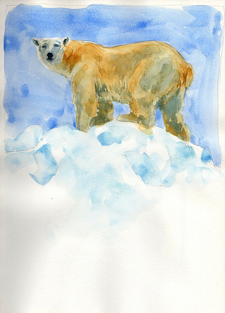 polar bear watercolor (6).jpg