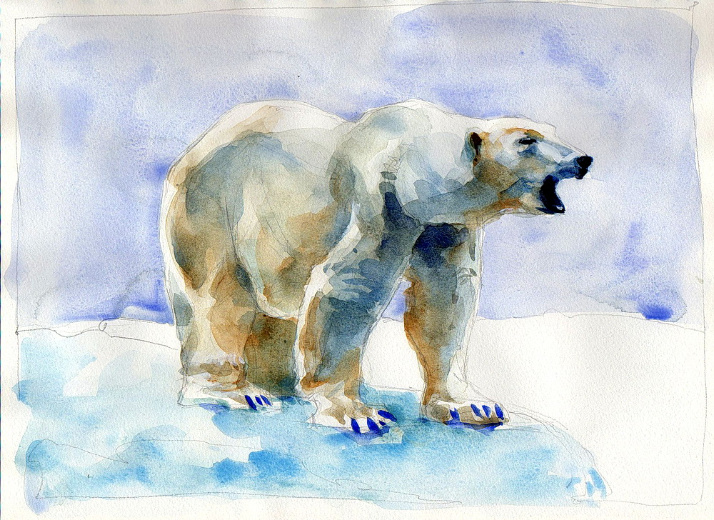polar bear watercolor (12).jpg