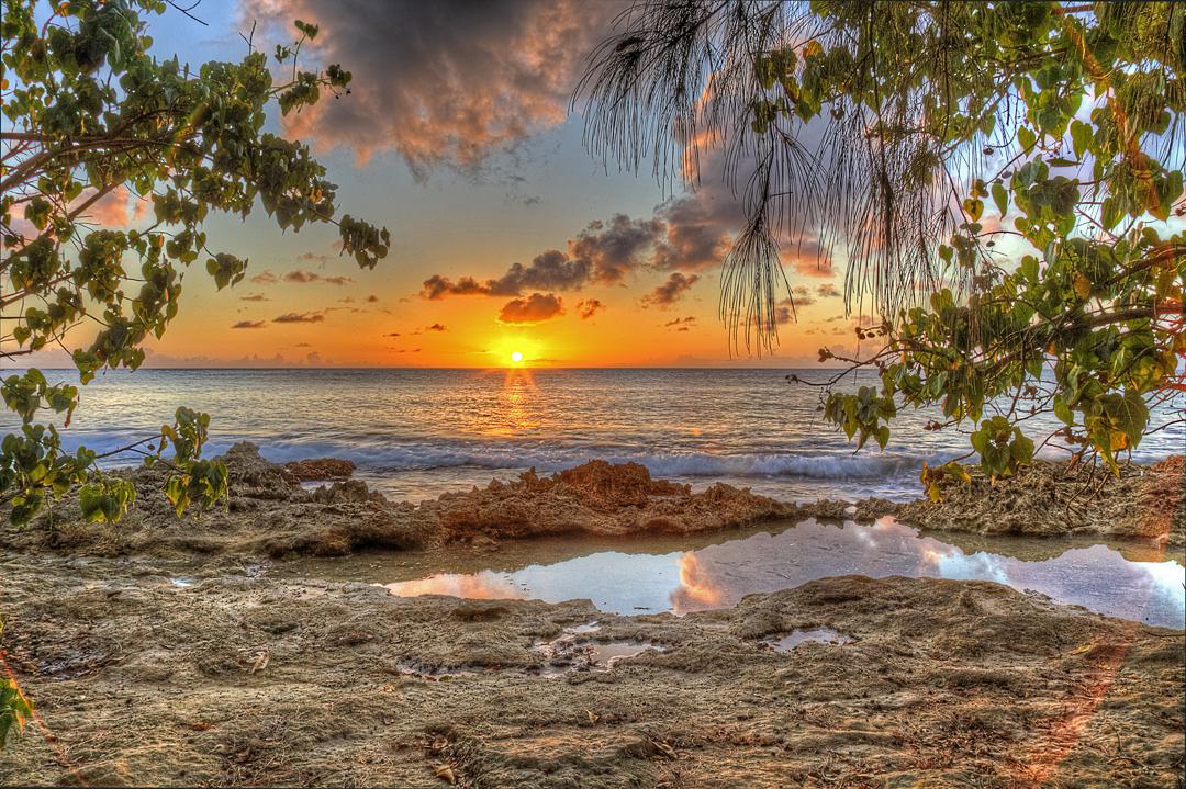 Lens Flare SunsetSS.jpg