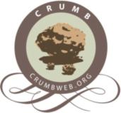 crumb.png