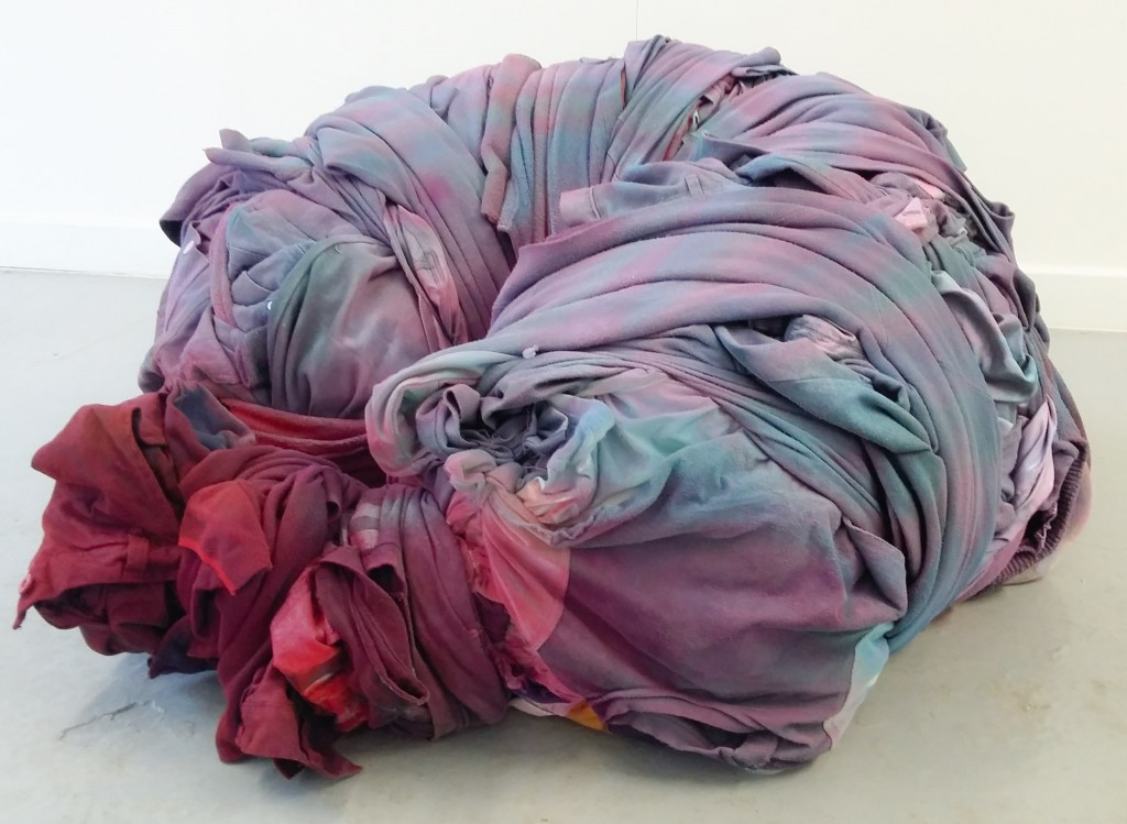 Damian Massey.  Worm:Young Insect, 2016    Discarded Clothing, wire , paint.