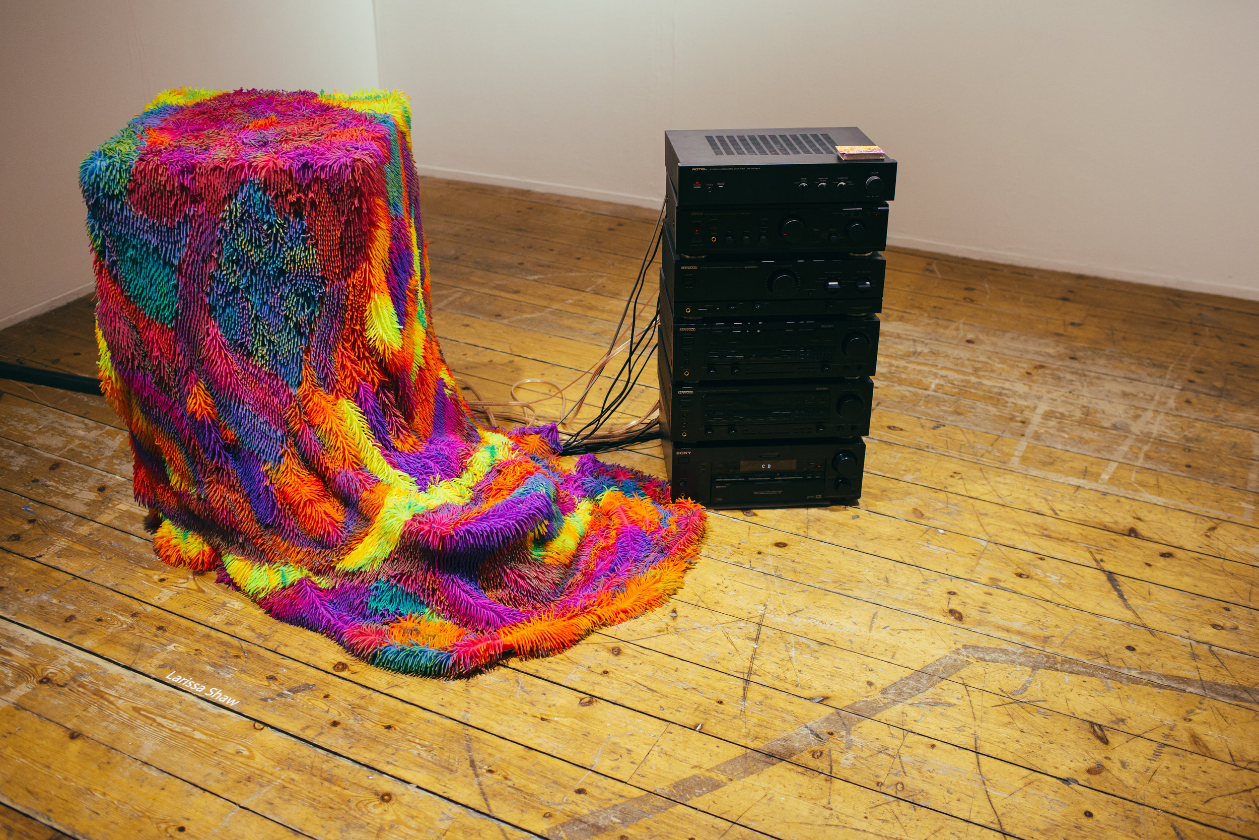 Larissa Shaw, Flesh Party, 2017.