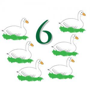 Day6-geese.jpg
