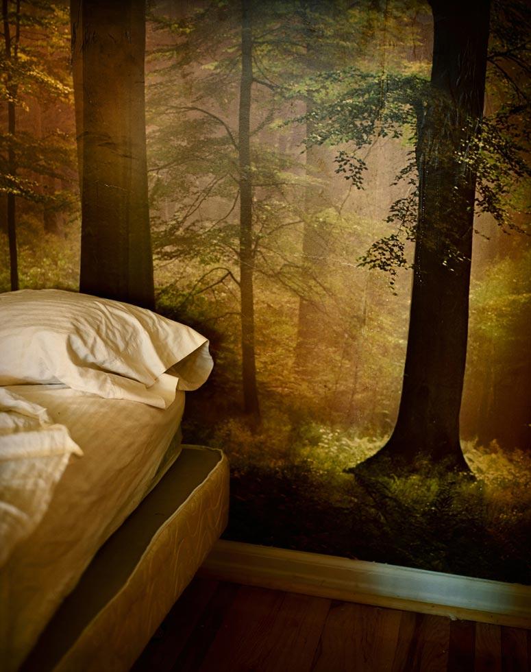 woods-wallpaper-5a.jpg