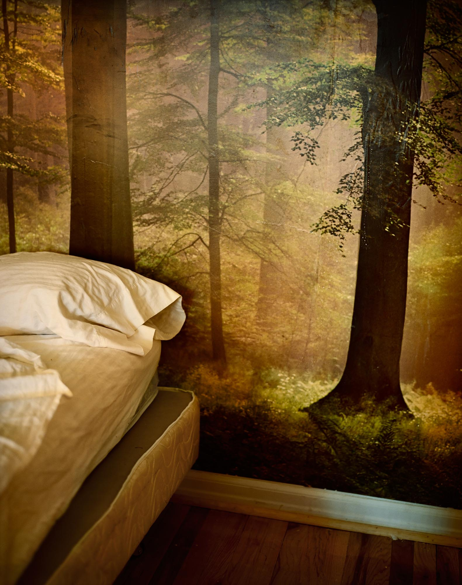 Bed and Woods  (2006)  20x24, Edition 1/7