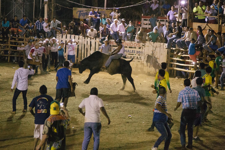 150322_Bull_Riding_Color_WebAAAA0090.jpg