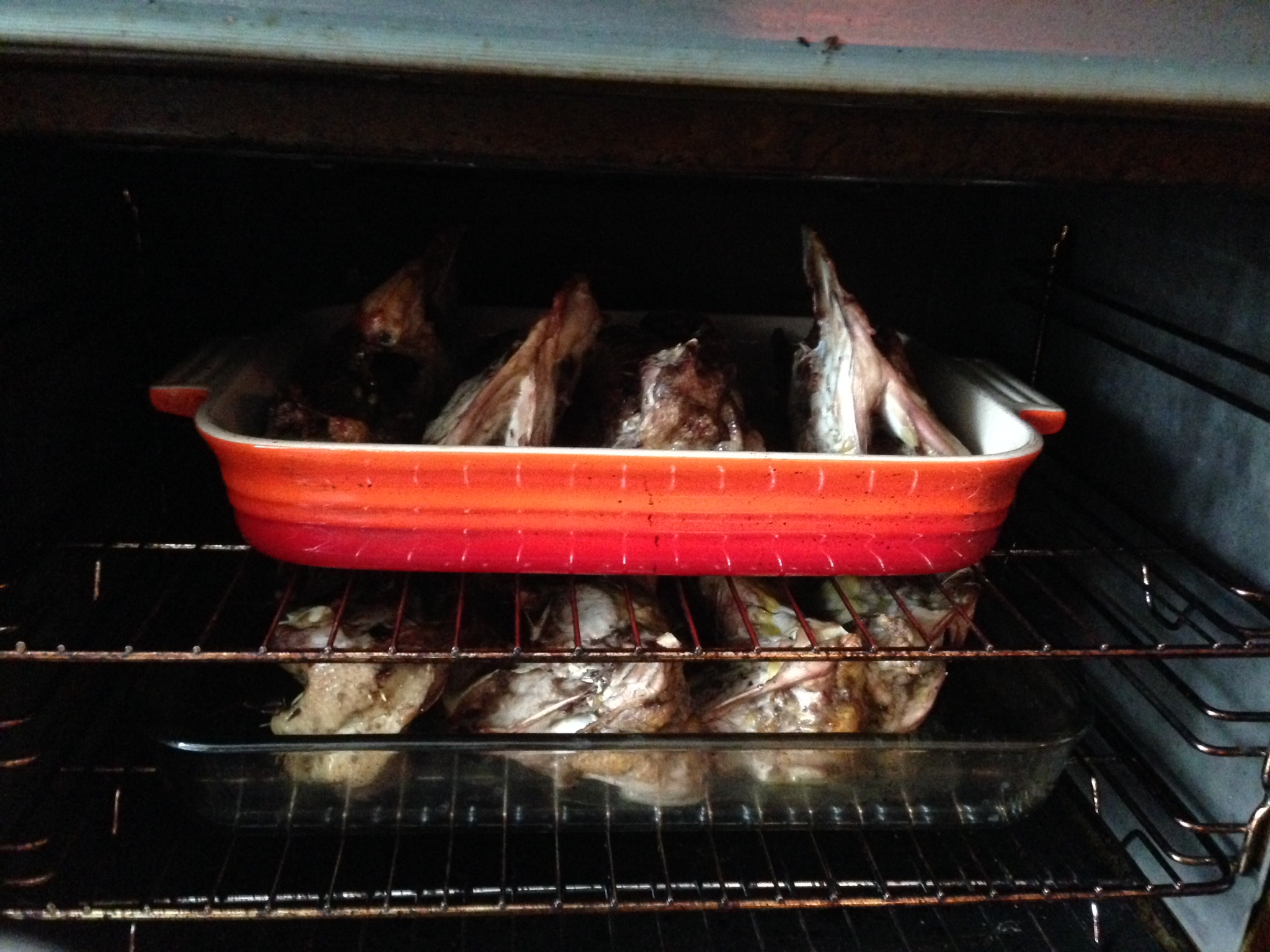 Several chicken carcasses roasting in the oven