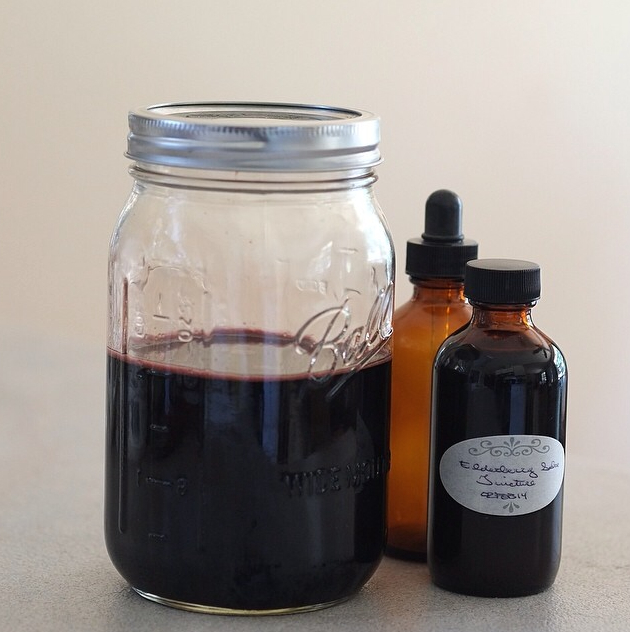 Homemade organic elderberry and echinacea tincture glycerite