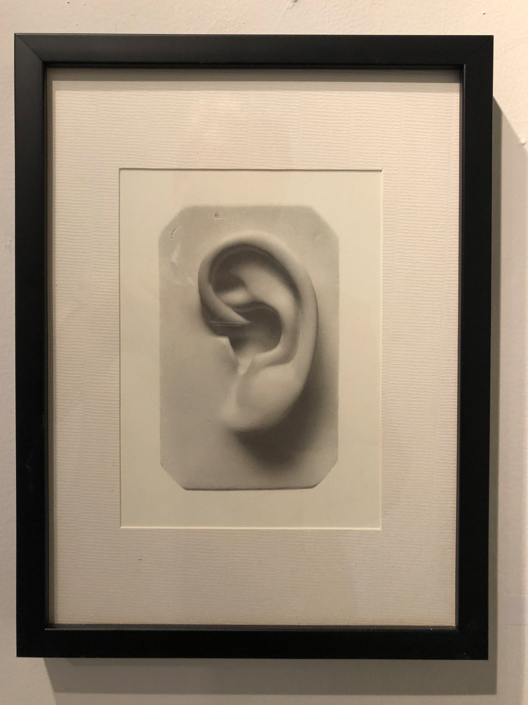 Andrew Shears  Untitled (ear ) graphite on paper