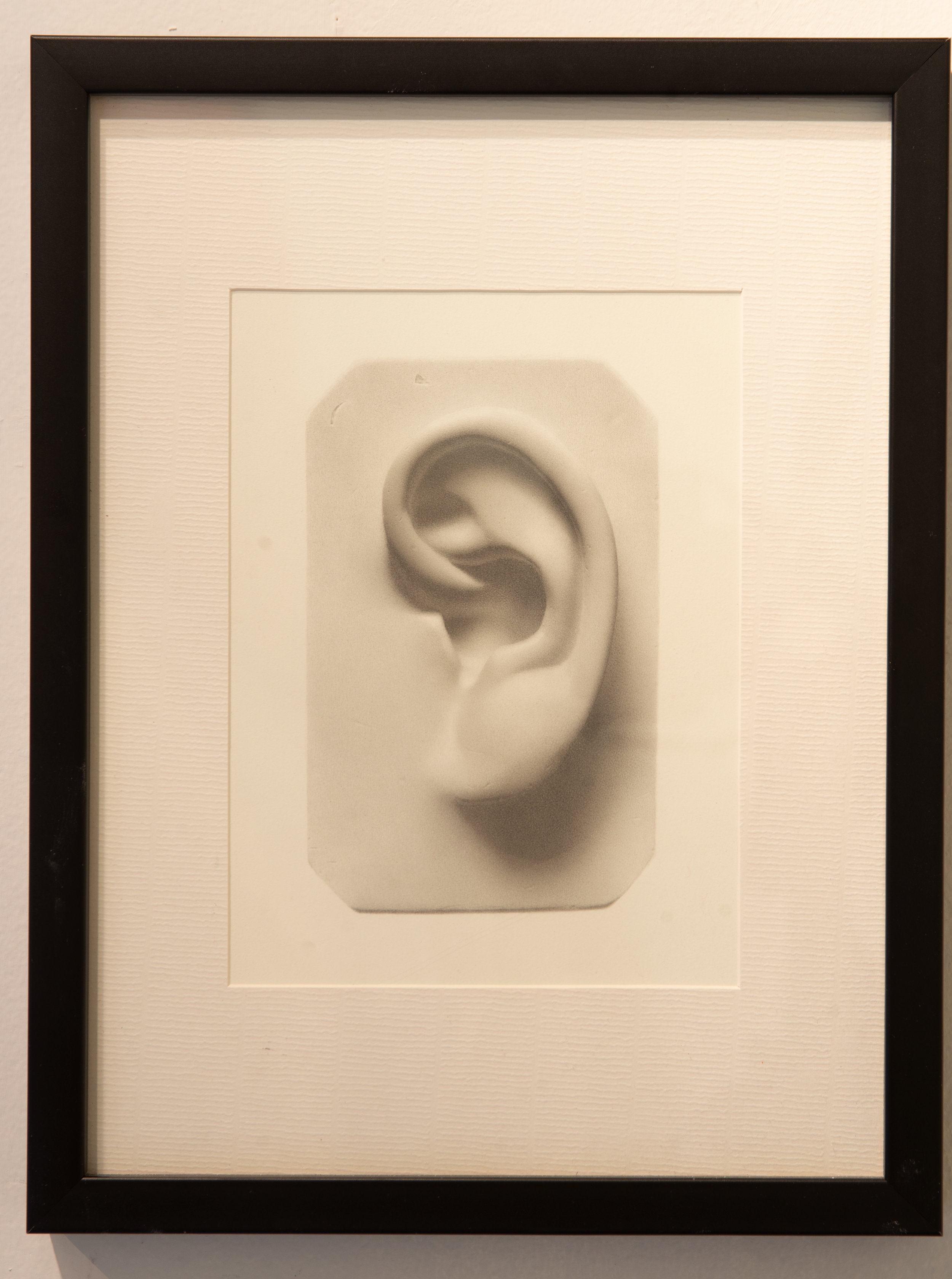 Untitled( Ear)  ANDREW SHEARS graphite on paper 13x10