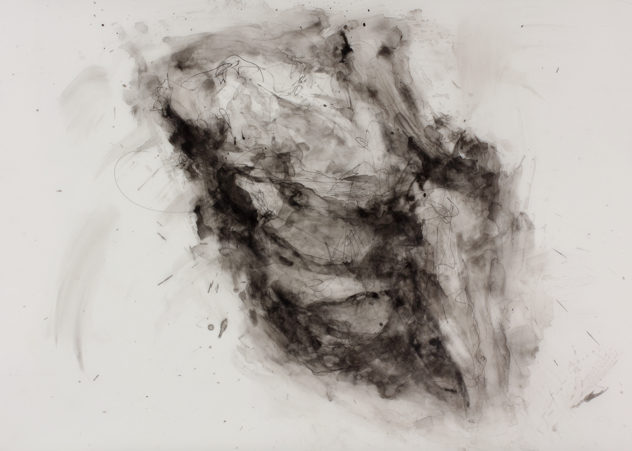 Lump of Coal , 2011  Ink on Drafting Film  24 × 36 in