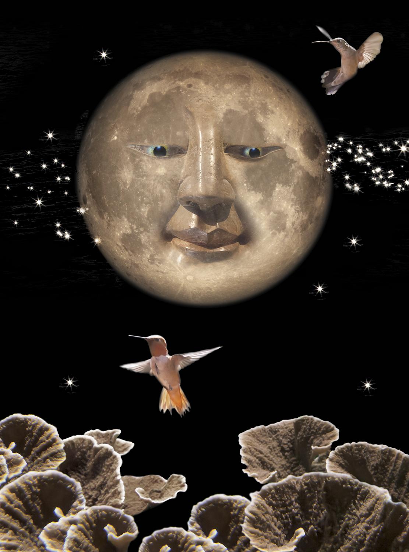 Cheshire Moon-Hathaway.jpg