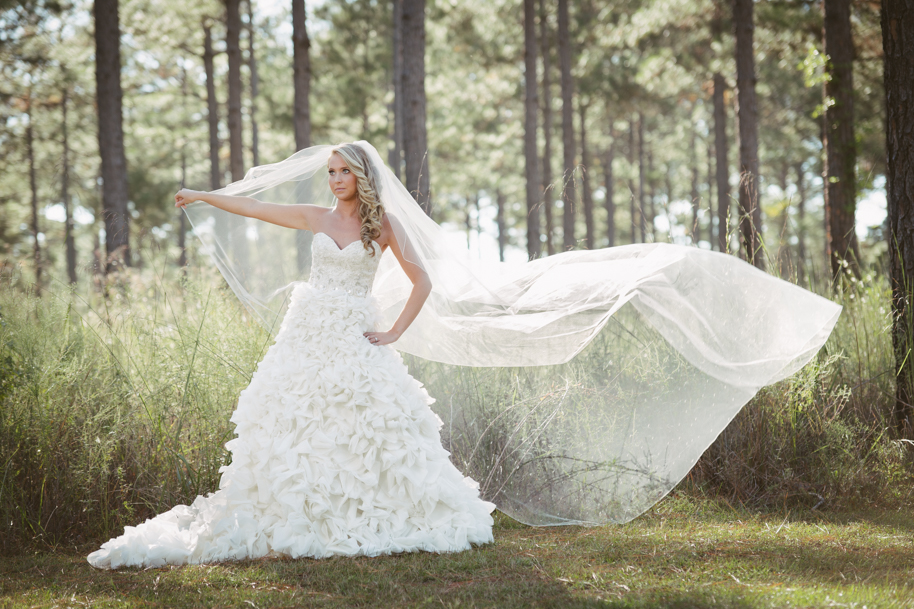 Monticello Wedding Photographer