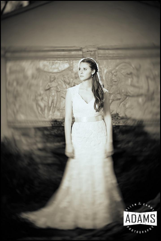 Adams Photography tori's Bridal Portraits_0022.jpg