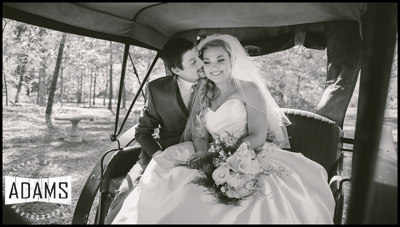 LOVE AND MARRIAGE...GOES TOGETHER LIKE A HORSE AND CARRIAGE!