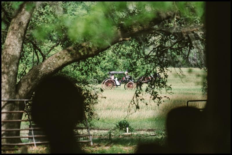 willow pond wedding_0052.jpg
