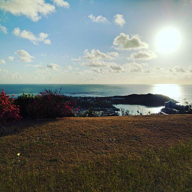 Morning sunshine 🌞🌴🌞🌴 #oceanviews