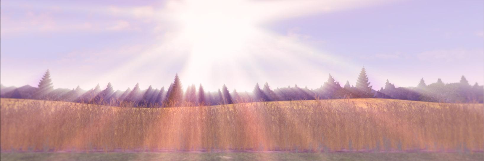 FIERA_wheat2.jpg