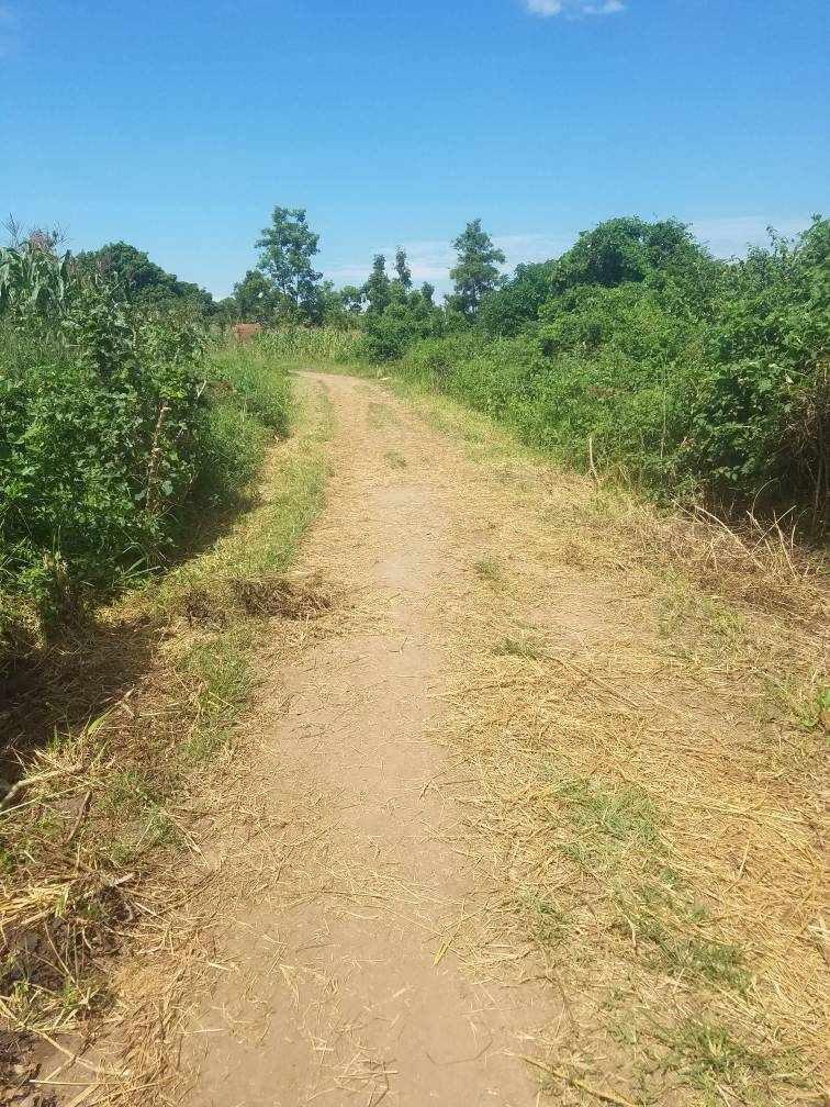 Access Road to Children's Home