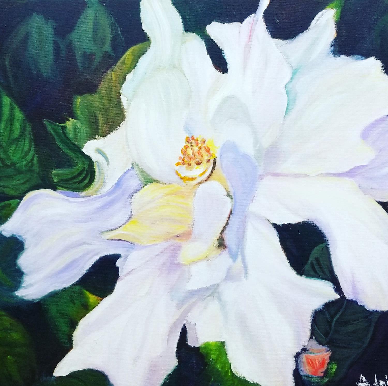 Double White Hibiscus